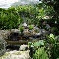 image 06-kuala-lumpur-bird-park-klbp-jpg