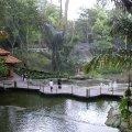 image 11-kuala-lumpur-bird-park-klbp-jpg
