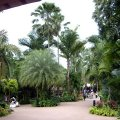 image 01-entrance-to-jurong-bird-park-singapore-2010-jpg