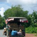 image 017-heading-home-from-the-market-jpg