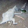 image 25-mummified-marsupial-on-chamber-floor-jpg