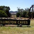 image 01-wellington-caves-tourist-landmark-jpg