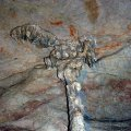 image 10-stalactite-formation-jpg