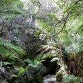 image 02-cave-entrance-jpg