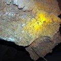 image 08-cave-coral-jpg
