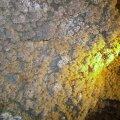 image 24-cave-coral-or-popcorn-jpg