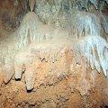 image 29-cave-coral-jpg