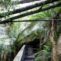 image 10-junee-river-cave-jpg