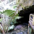 image 18-junee-river-emerging-from-junee-cave-jpg