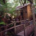 image 04-marakoopa-cave-tour-waiting-area-jpg