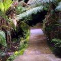 image 07-marakoopa-cave-entrance-jpg
