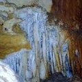 Princess Margaret Rose Cave - Lower Glenelg National Park, VICTORIA