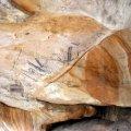 image 013-aboriginal-rock-painting-site-1b-jpg