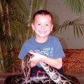 image 031-holding-burmese-python-at-australia-zoo-jpg