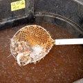 image 011-grand-isle-buying-shrimps-from-wholesaler-jpg