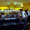 image 34-assorted-non-alcoholic-drinks-the-newsroom-jpg
