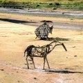 image 011c-driftwood-art-alder-lake-3-jpg