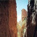 image 027-nt-standley-chasm-western-macdonnell-ranges-jpg