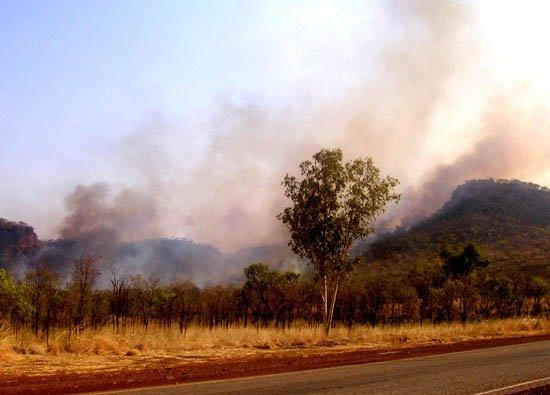 image 082-nt-bushfire-just-outside-katherine-jpg