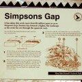 image 025-nt-simpsons-gap-info-board-jpg