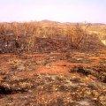 image 061-wa-desolate-bungle-bungle-jpg