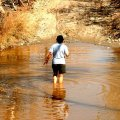 image 062-crocodile-hunter-in-the-bungle-bungle-creek-jpg