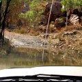 image 063-bungle-bungle-creek-tested-safe-for-vehicle-jpg