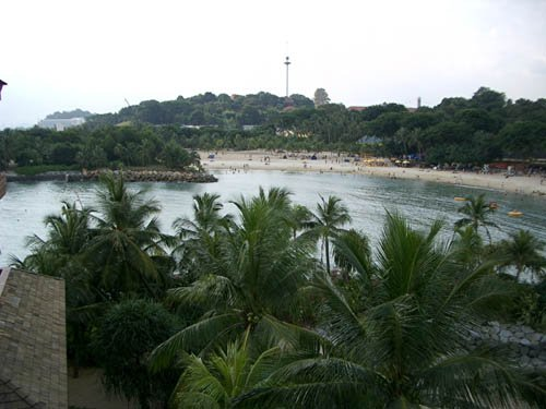 image 108-another-view-from-tower-jpg