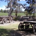 image ettamogah-pub-bullocky-wagons-jpg