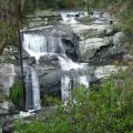 image agnes-falls-2008-vic-jpg