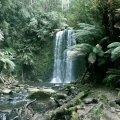 image beauchamp-falls-2005-beech-forest-vic-jpg