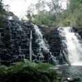 image dip-falls-1-2009-dip-river-forest-reserve-tas-jpg